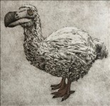 Faith Chevannes, 782 - THE FASCINATING LONDON FAUX DODO