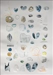 Louise Thompson, 812 - SHELLS, PEBBLES AND PLASTICS. BEACHCOMBING