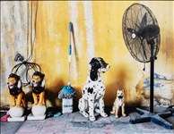 Trevor Moore, 29 - STILL LIFE WITH MOP, FAN AND CHINA DOGS (VIETNAM)