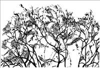 Sasa Marinkov, 1181 - BLACK BIRDS GATHERING
