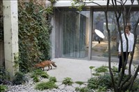 Juergen Teller and 6a architects, 619 - CHARLOTTE RAMPLING, A FOX, AND A PLATE NO.7, LATIMER ROAD, LONDON 2016 © 2016 JUERGEN TELLER, ALL RIGHTS RESERVED