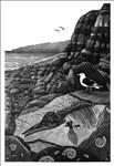 Andy English, 1217 - ON CHARMOUTH BEACH