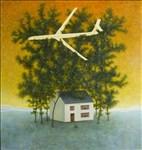 Alasdair Wallace, 768 - LOW FLYING PLANE