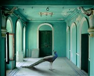 Karen Knorr, 1044 - THE QUEEN'S ROOM, ZANANA, UDAIPUR CITY PALACE