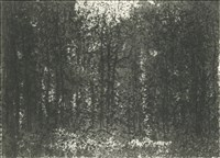 Norman Ackroyd RA, 784 - BURNHAM BEECHES