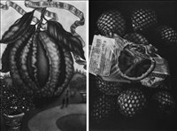 Jodi Le Bigre, 735 - FRUIT OF GHOSTS (DIPTYCH)