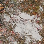 Ori Gersht, 26 - FLOATING WORLD MELTING WORLD 02