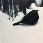 Helen Fay, 588 - SNOWBIRD I