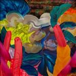Orlanda Broom, 784 - CHILLY DISCO