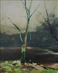 Paul Smith, 821 - DULE TREE 3