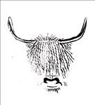 Ian Ritchie RA, 708 - HIGHLAND COW